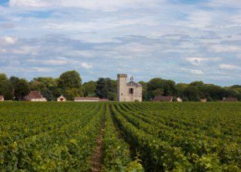 Organiser une virée itinérante sur les routes des vins et des châteaux.